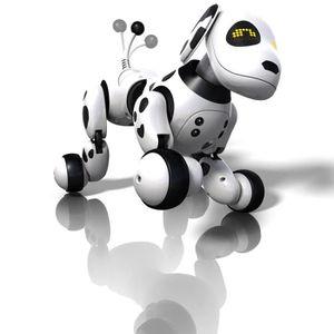 ZOOMER- Robot chien Dalmatien 2.0 Spinmaster