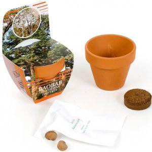 petit pot terre cuite achat vente petit pot terre cuite pas cher cdiscount. Black Bedroom Furniture Sets. Home Design Ideas
