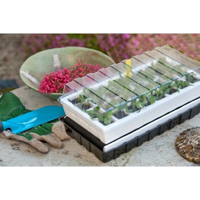 mini serre culture r serve d 39 eau h16x38x24cm achat vente pack germination mini serre. Black Bedroom Furniture Sets. Home Design Ideas