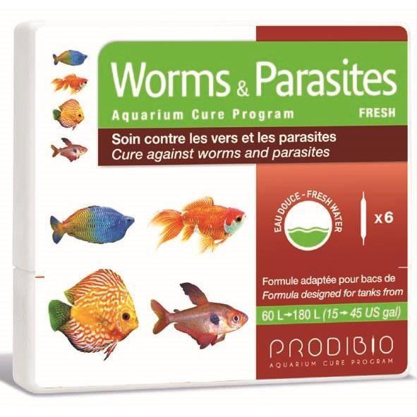 Des parasites les plus importants de la personne