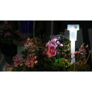 GALIX Lanterne solaire en plastique - Translucide