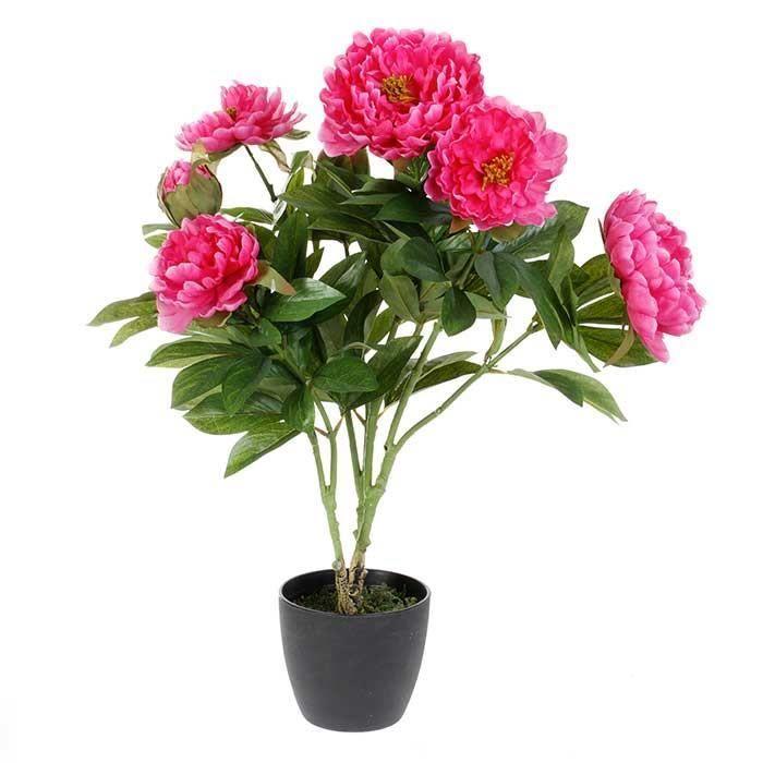 Fleur plante artificielle pivoine hauteur 60 cm achat for Plante 60 cm