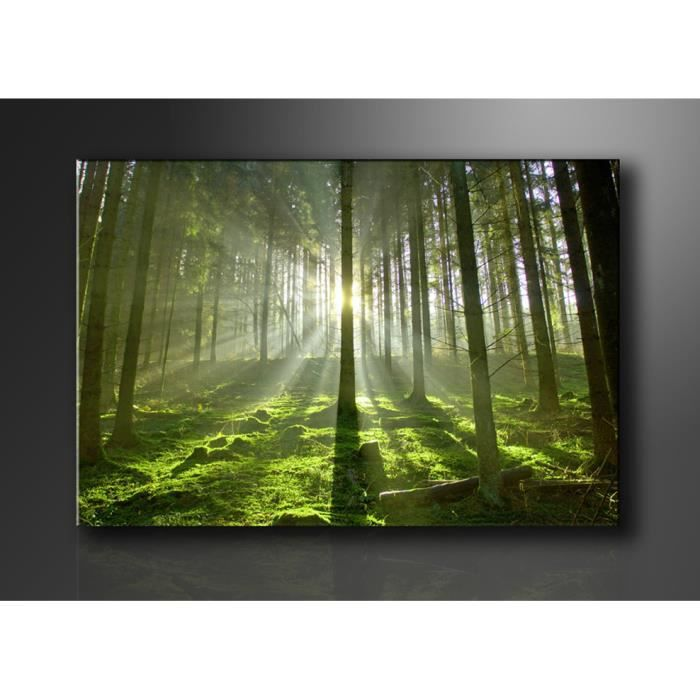 tableau moderne imprim 120x80 cm foret achat vente tableau toile toile bois cdiscount. Black Bedroom Furniture Sets. Home Design Ideas