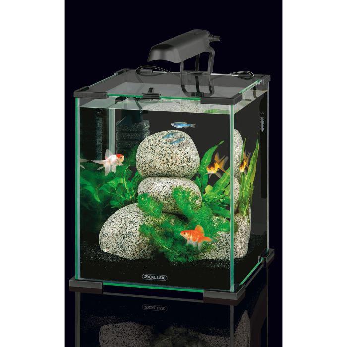 Achat aquarium complet pas cher for Achat plantes vivaces pas cher