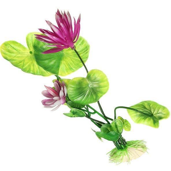 plante pour aquarium achat vente d co v g tale racine plante pour aquarium cdiscount. Black Bedroom Furniture Sets. Home Design Ideas
