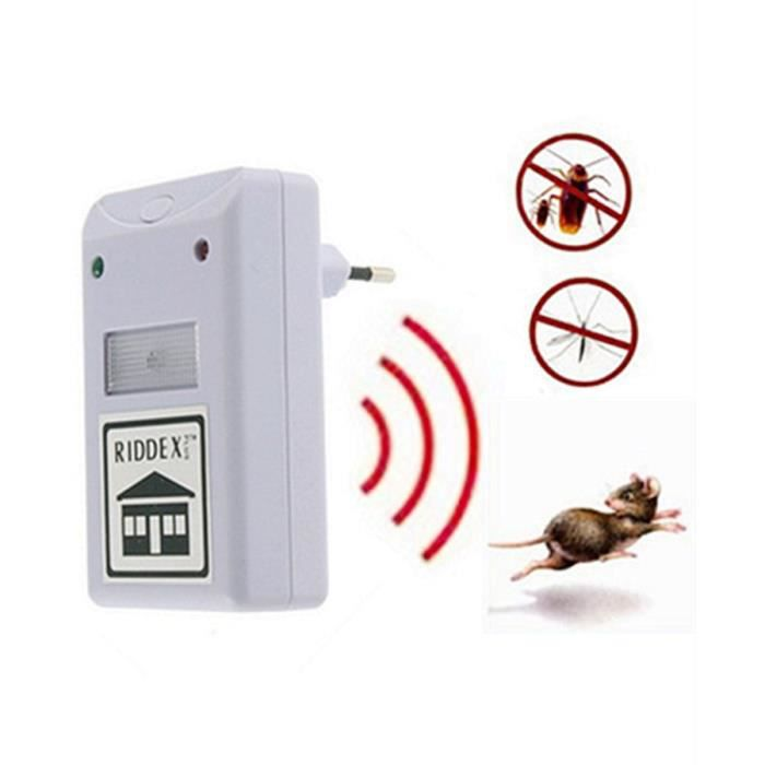 Anti rats souris insectes ultrason pest repeller for Anti repousse poil maison