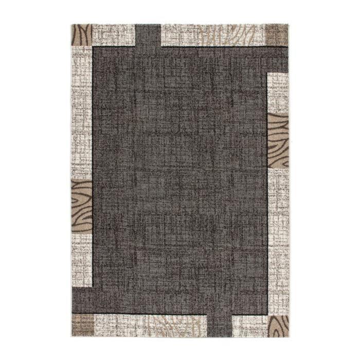 Mondo tapis de salon gris 160x230 cm achat vente tapis cdiscount - Tapis salon gris design ...