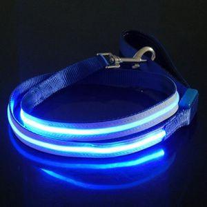 LAISSE - ACCOUPLE Laisse pour Chien Bleue avec LED de Sécurité