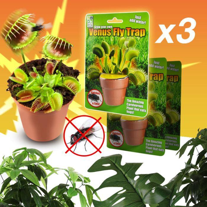 Plante carnivore venus anti insectes x3 achat vente for Achat plante