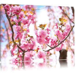 Fleur de cerisier achat vente fleur de cerisier pas - Tableau pour deco couloir ...