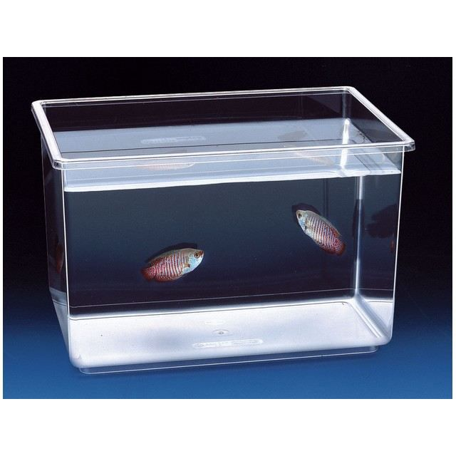 Aquarium pour poisson nettuno h27 achat vente for Aquarium pour poisson