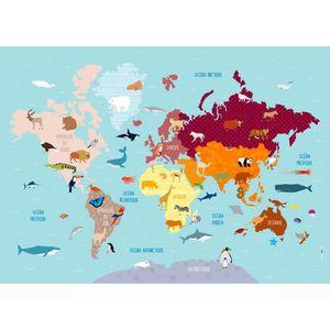 AFFICHE Poster Géant plastifié : Carte du monde