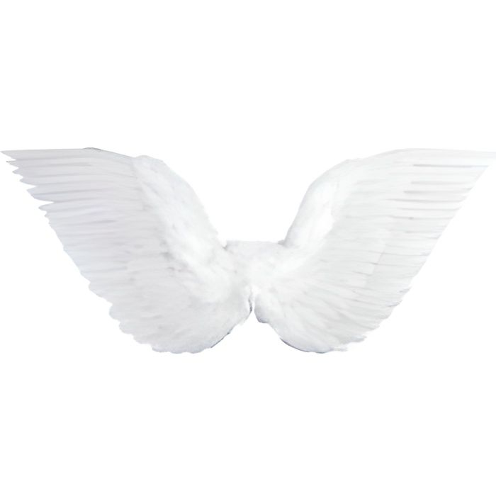 Ailes d 39 ange oiseau plumes blanches achat vente for Tableau aile d ange