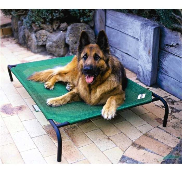 Coolaroo Elevated Dog Bed For Large Breeds