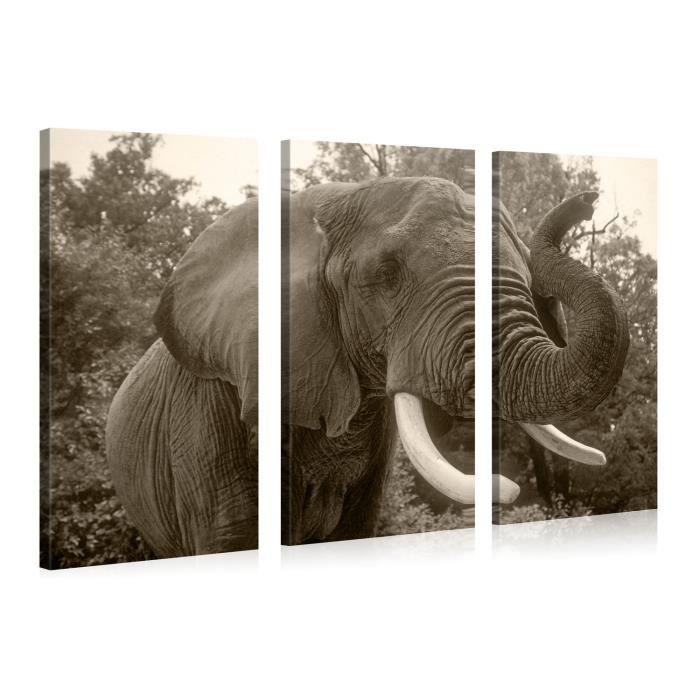 tableau sur toile elephant n b 120x80cm achat vente tableau toile toile bois cdiscount. Black Bedroom Furniture Sets. Home Design Ideas
