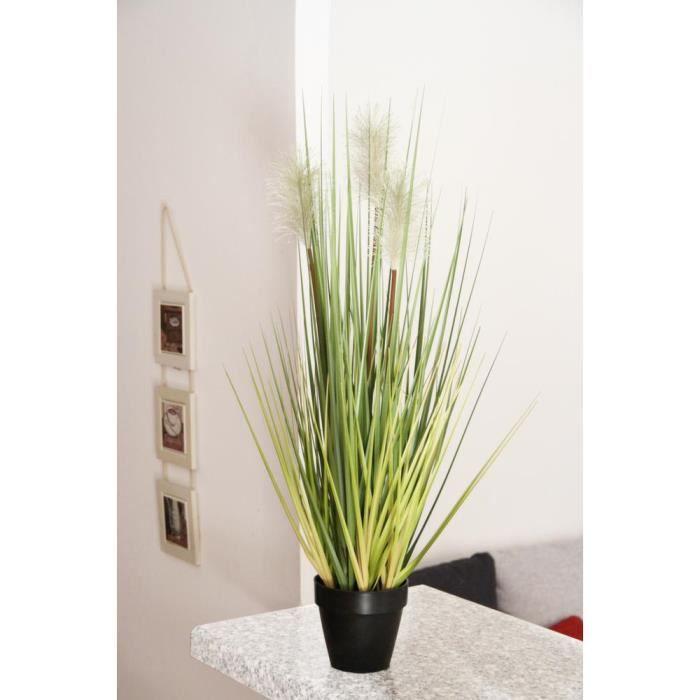 gramin es avec plumeaux en pot achat vente plante. Black Bedroom Furniture Sets. Home Design Ideas