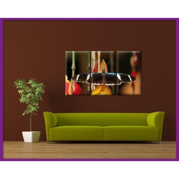 Bilderdepot24 impression sur toile papillon 150x90cm for Tableau impression sur toile