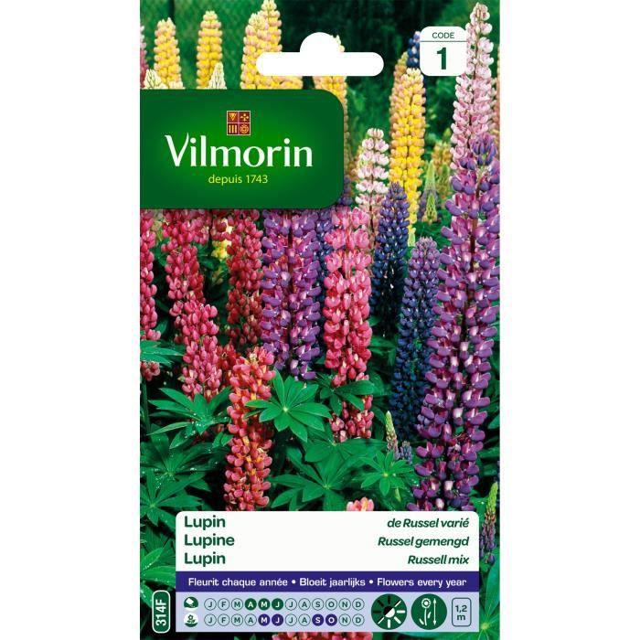 Vilmorin lupin de russel vari achat vente graine for Vilmorin graines