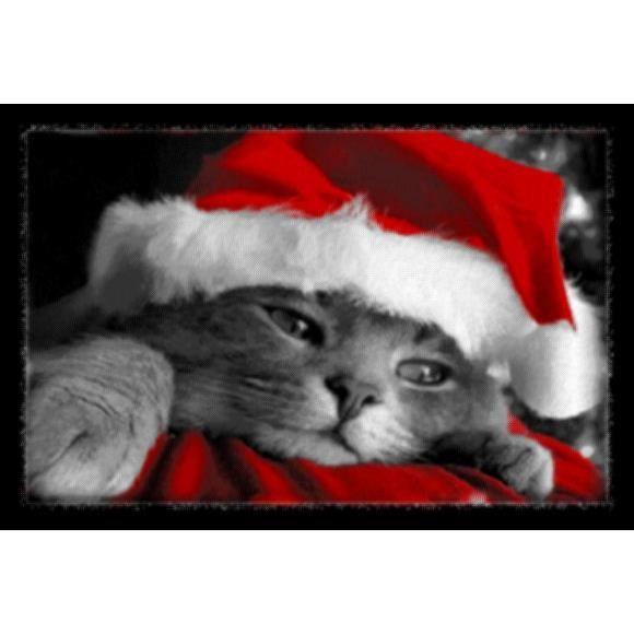 Tapis deco chat de noel 40x60cm achat vente tapis cdiscount - Achat noel paiement differe ...