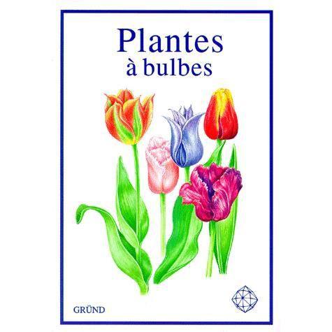 les plantes a bulbes achat vente livre parution pas cher cdiscount. Black Bedroom Furniture Sets. Home Design Ideas