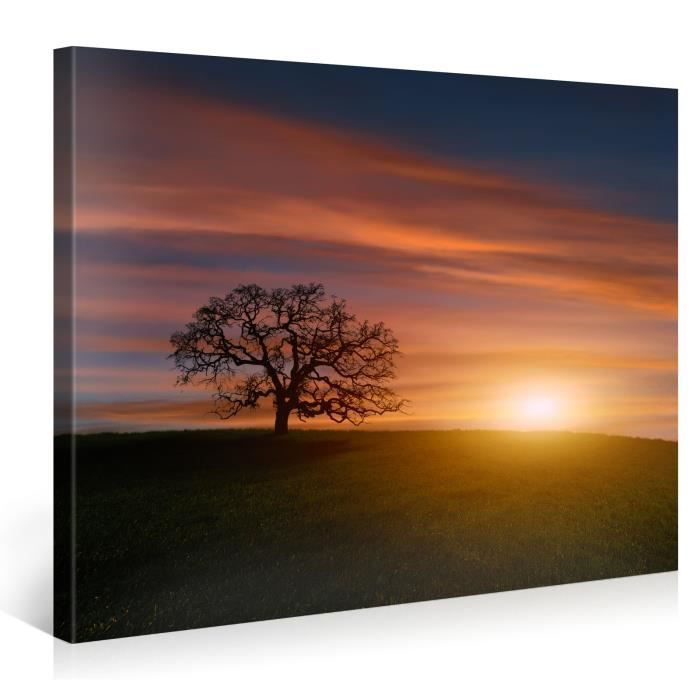 tableau sur toile arbre sunrise 100x75cm achat vente. Black Bedroom Furniture Sets. Home Design Ideas