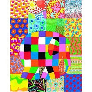 LIVRE D'ÉVEIL Livre - Le grand jour d'Elmer