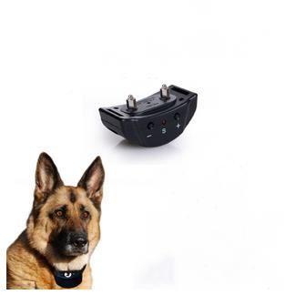 collier de dressage anti aboiement pour chien elec achat. Black Bedroom Furniture Sets. Home Design Ideas