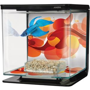 AQUARIUM BETTA ART DECO starter kit aquarium 2 L