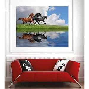 poster mural chevaux achat vente poster mural chevaux pas cher soldes cdiscount. Black Bedroom Furniture Sets. Home Design Ideas