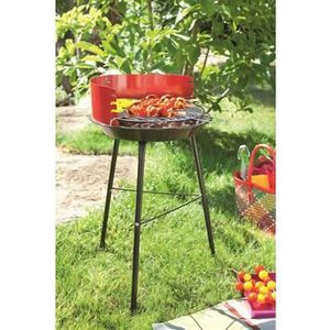 Barbecue charbon sur pied achat vente barbecue charbon for Quel barbecue charbon choisir