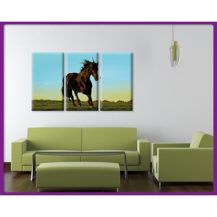 Bilderdepot24 impression sur toile cheval 90x60cm 3tlg for Tableau impression sur toile