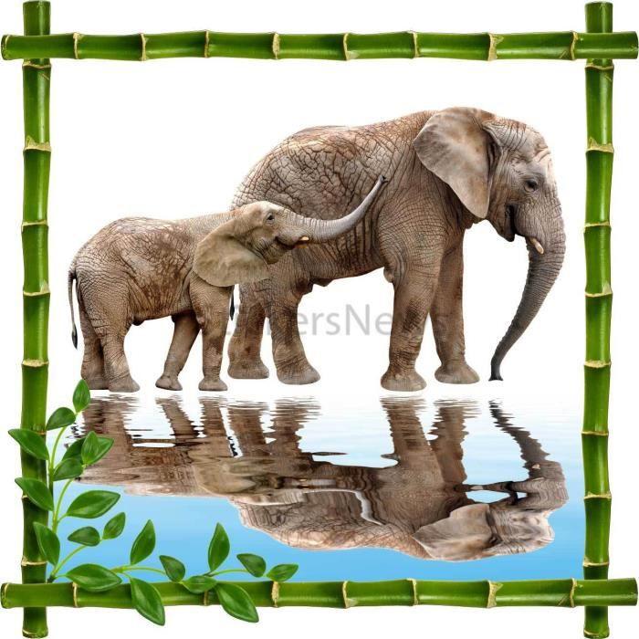 Sticker autocollant cadre bambou el phants dimensions - Attache cadre autocollant ...