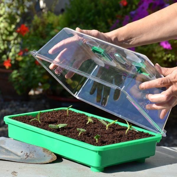 Mini Serre Pour Semis Couvercle Haut Achat Vente Entretien Outil De Jardin Cdiscount