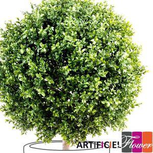 Plante verte d exterieur achat vente plante verte d for Boule de buis artificiel 50 cm pas cher