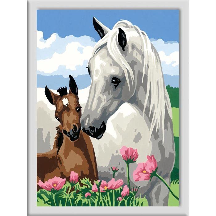 N d 39 art grand format jument grise et poulain achat - Photo d art grand format ...