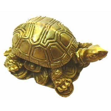 genbu la tortue feng shui statuette achat vente pack objet de deco bronze r sine cdiscount. Black Bedroom Furniture Sets. Home Design Ideas