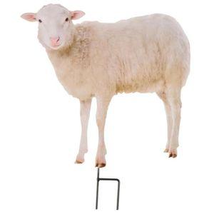 D coration de jardin achat vente d coration de jardin pas cher - Deco jardin mouton toulon ...