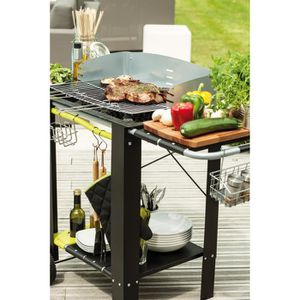 BARBECUE CALDEIRA Barbecue charbon 55 x 38 cm sur chariot