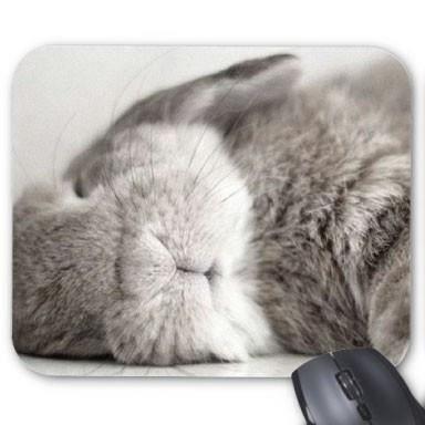 tapis de souris personnalis lapin ref 2339 prix pas cher cdiscount. Black Bedroom Furniture Sets. Home Design Ideas