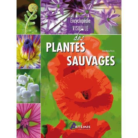 encyclop die visuelle des plantes sauvages achat vente livre jean marie polese losange. Black Bedroom Furniture Sets. Home Design Ideas