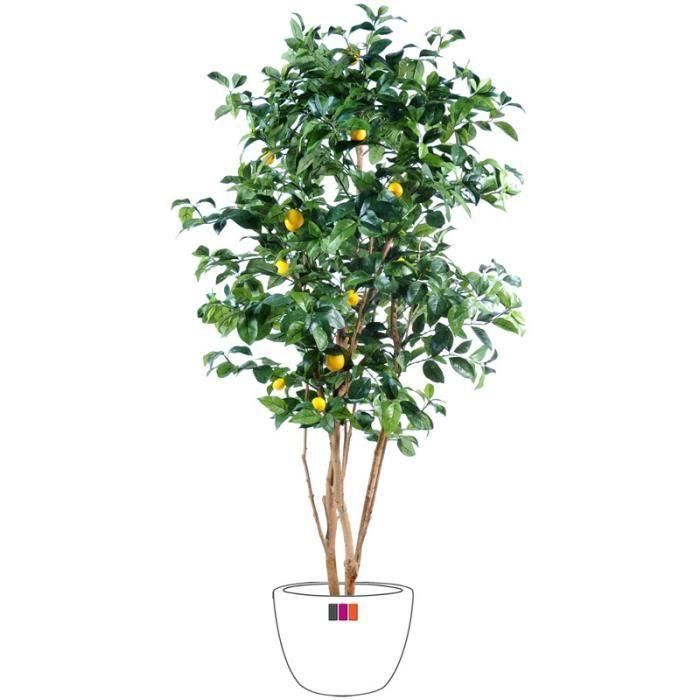 Citronnier 150cm arbre fruitier artificiel achat vente fleur artificielle cdiscount - Citronnier feuilles jaunes ...