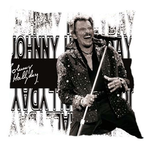 coussin johnny hallyday achat vente coussin cdiscount. Black Bedroom Furniture Sets. Home Design Ideas