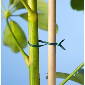 Lien plastique armé vert 50 m