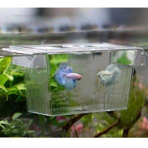 Pondoir pour poisson achat vente pondoir pour poisson for Bac polyester poisson