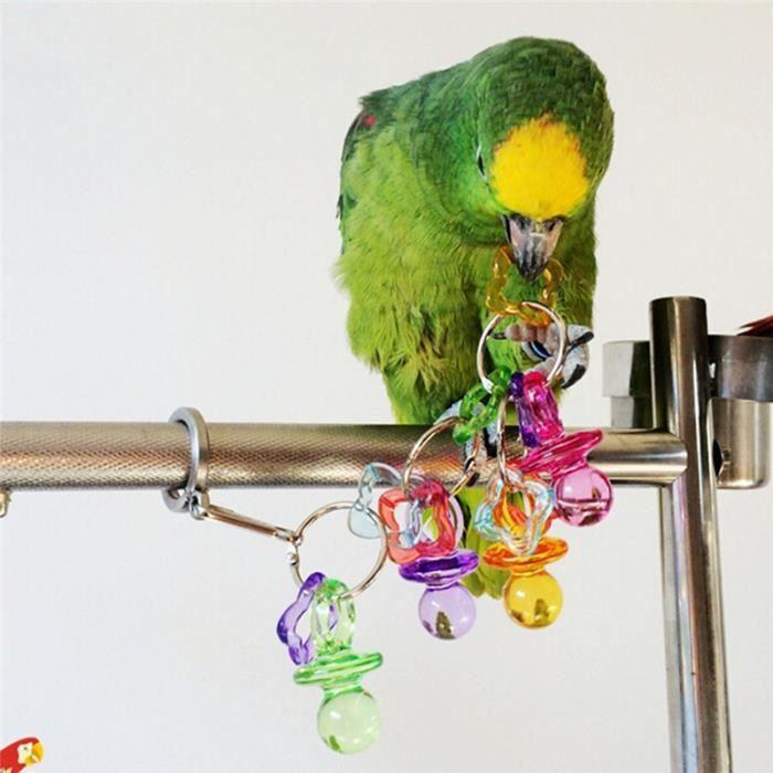 jouet t tine pour perroquet oiseaux domestiques pendentif accessoire achat vente roue. Black Bedroom Furniture Sets. Home Design Ideas