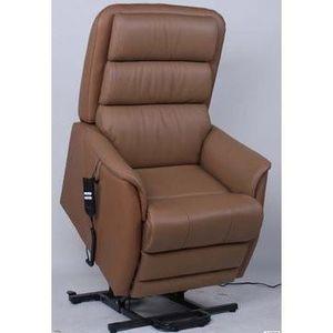 fauteuil de relaxation releveur electrique achat vente fauteuil de relaxa. Black Bedroom Furniture Sets. Home Design Ideas