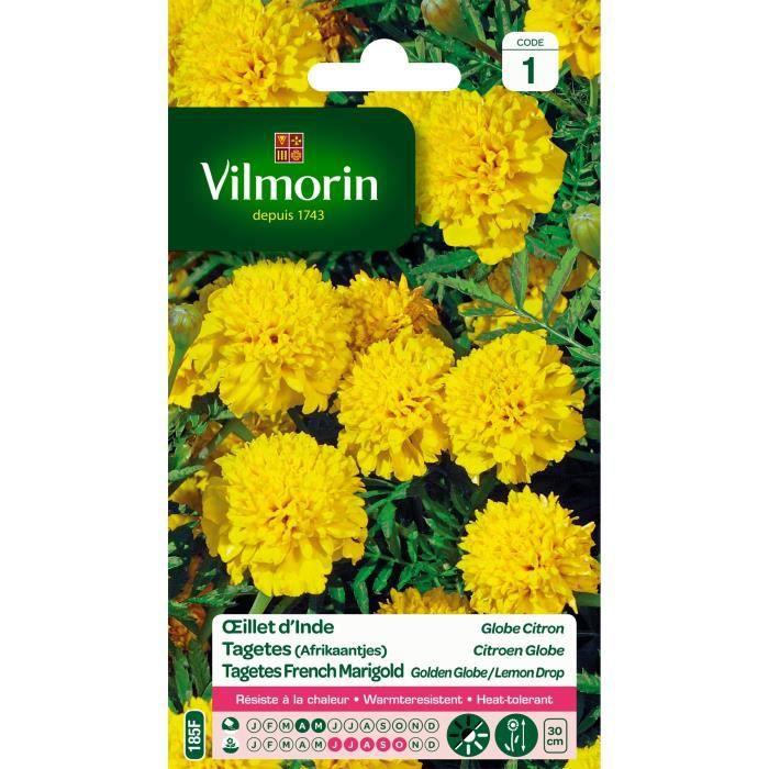 Vilmorin oeillet d 39 inde globe citron achat vente for Vilmorin graines