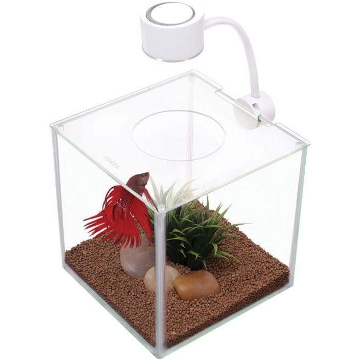 décoration aquarium verre