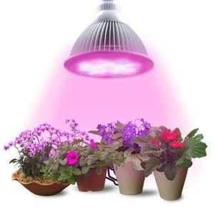 lampe pour plante interieur achat vente lampe pour. Black Bedroom Furniture Sets. Home Design Ideas