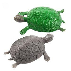 Deco aquarium tortue achat vente deco aquarium tortue - Echelle decorative pour plantes ...